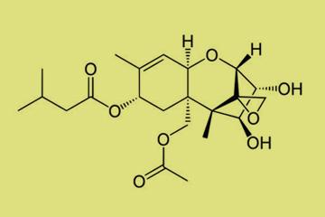toxinok t 2 és ht 2